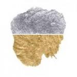 PAINT - DBL PACK SILVER/GOLD METALLIC (200mls)